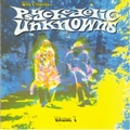 VARIOUS ARTISTS - PSYCHEDELIC UNKNOWNS VOL. 7