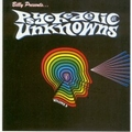 VARIOUS ARTISTS - PSYCHEDELIC UNKNOWNS VOL. 8