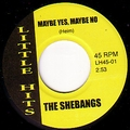 1 x SHEBANGS - MAYBE YES, MAYBE NO