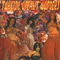 VARIOUS ARTISTS - TURKISH ONE HIT WONDERS