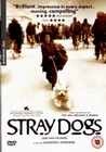 STRAY DOGS - DVD - Unterhaltung