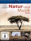 NATUR UND MUSIK AFRIKA - BLU-RAY - Tiere