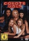 COYOTE UGLY - DVD - Komödie