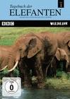 TAGEBUCH DER ELEFANTEN 1 - DVD - Tiere
