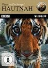 HAUTNAH - TIGER IM DSCHUNGEL - DVD - Tiere