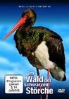 IM WALD DER SCHWARZEN STÖRCHE - DER SCHWARZST... - DVD - Tiere