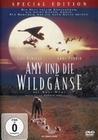 AMY UND DIE WILDGÄNSE - SPECIAL EDITION - DVD - Unterhaltung
