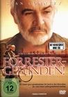FORRESTER - GEFUNDEN! - DVD - Unterhaltung