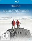 BEGEGNUNGEN AM ENDE DER WELT (+ DVD) - BLU-RAY - Erde & Universum