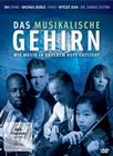 DAS MUSIKALISCHE GEHIRN - WIE MUSIK IN UNSEREM.. - DVD - Mensch