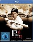 IP Man Zero [SE]
