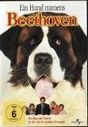 EIN HUND NAMENS BEETHOVEN - DVD - Komödie