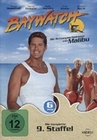 BAYWATCH - 9. STAFFEL [6 DVDS] - DVD - Unterhaltung