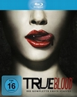 TRUE BLOOD - STAFFEL 1 [5 BRS] - BLU-RAY - Unterhaltung