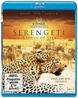 SERENGETI - CIRCLE OF LIFE - BLU-RAY - Tiere