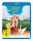 SCHWEINCHEN BABE IN DER GROSSEN STADT - BLU-RAY - Komdie