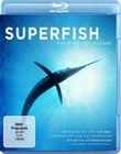 SUPERFISH - SPRINTER DER OZEANE - BLU-RAY - Tiere