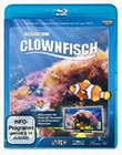 CLOWNFISCH-AQUARIUM - BLU-RAY - Impressionen