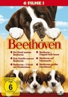 BEETHOVEN - 6 MOVIE-SET/TEIL 1-6 [6 DVDS] - DVD - Komödie