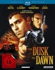 From dusk till dawn [SE] [2 BR]