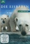 DIE EISBÄREN - AUG IN AUG MIT DEN EISBÄREN - DVD - Tiere