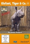 ELEFANT, TIGER & CO. - TEIL 29 [2 DVDS] - DVD - Tiere