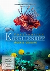 FASZINATION KORALLENRIFF - JÄGER & GEJAGTE - DVD - Tiere