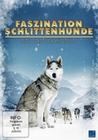 FASZINATION SCHLITTENHUNDE - DVD - Tiere