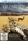 GEPARDEN - WILDLIFE EDITION - DVD - Tiere