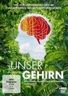 UNSER GEHIRN [4 DVDS] - DVD - Mensch