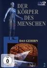 DER KÖRPER DES MENSCHEN 2 - DVD - Mensch