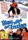 BLAU BLÜHT DER ENZIAN - DVD - Komödie