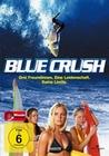BLUE CRUSH - DVD - Unterhaltung