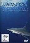 BLUE MOTION - KÖNIGE DER MEERE - DVD - Tiere