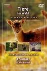 TIERE IM WALD - DVD - Tiere