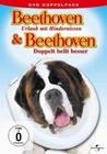 BEETHOVEN - URLAUB MIT../DOPPELT BELLT..[2 DVDS] - DVD - Komödie