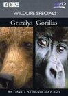 WILDLIFE SPECIALS - GRIZZLYS/GORILLAS - DVD - Tiere
