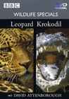 WILDLIFE SPECIALS - LEOPARD/KROKODIL - DVD - Tiere