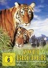 ZWEI BRÜDER - DVD - Abenteuer