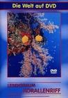 LEBENSRAUM KORALLENRIFF - DVD - Tiere