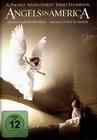 ANGELS IN AMERICA [2 DVDS] - DVD - Unterhaltung