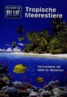 DISCOVER THE BLUE - TROPISCHE MEERESTIERE - DVD - Tiere