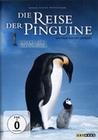DIE REISE DER PINGUINE - DVD - Tiere