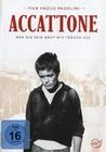 ACCATTONE - WER NIE SEIN BROT MIT TRÄNEN ASS - DVD - Unterhaltung