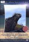 GALAPAGOS & ECUADOR ERLEBEN - DVD - Tiere