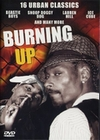 BURNING UP - 16 URBAN CLASSICS - DVD - Musik