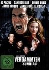 AN JEDEM VERDAMMTEN SONNTAG - DVD - Unterhaltung