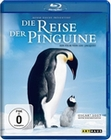 DIE REISE DER PINGUINE - BLU-RAY - Tiere