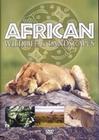 AFRICAN WILDLIFE & LANDSCAPES - DVD - Impressionen