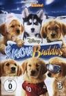 SNOW BUDDIES - ABENTEUER IN ALASKA - DVD - Komödie